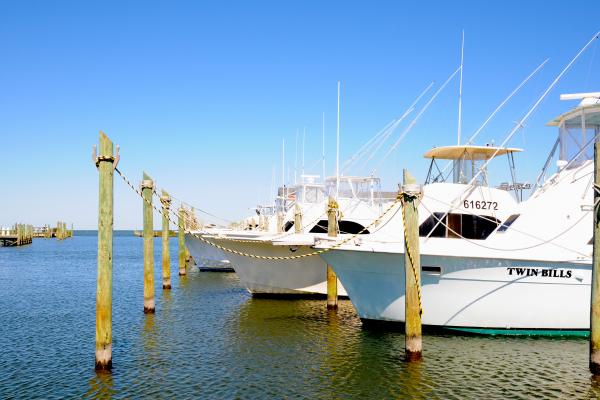 Hatteras fishing hatteras landing for Hatteras fishing charters