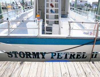 Stormy Petrel II at Hatteras Landing Marina