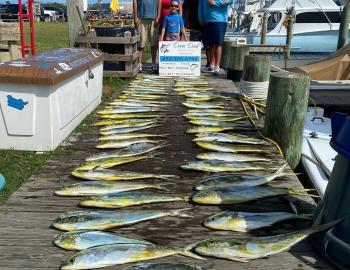 Dunn Deal Offshore Sportfishing Hatteras, NC
