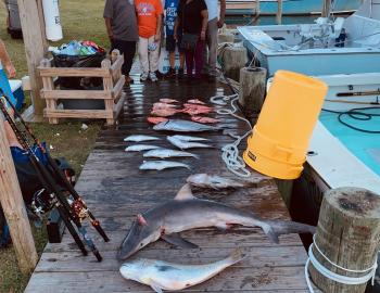 Rabid Tuna Fishing Teach's Lair