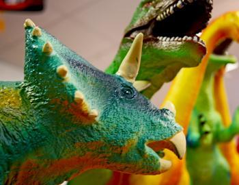Toys at Hatteras Landing
