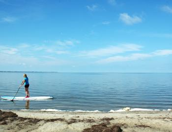 Stand Up Paddleboard Rentals OBX