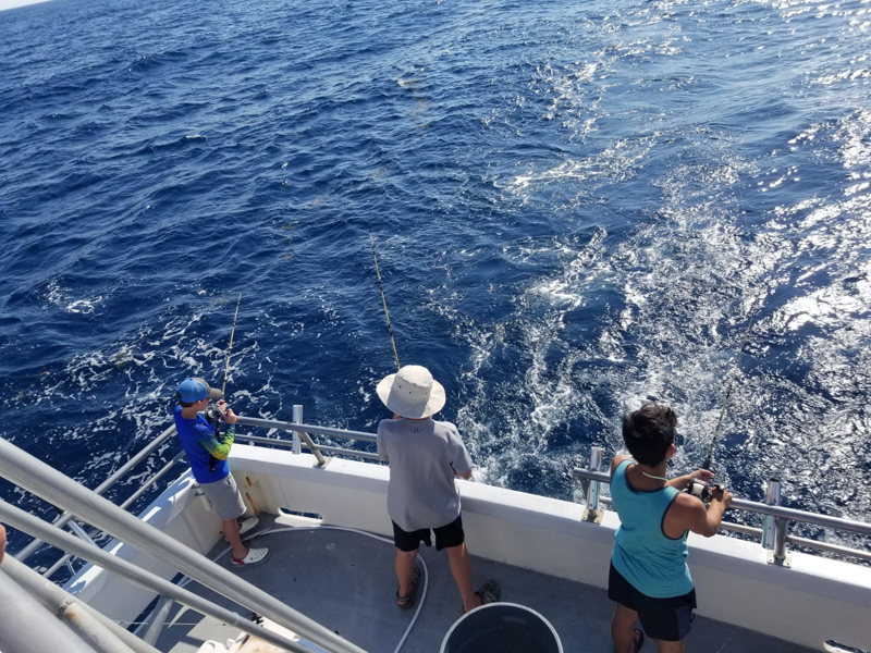 Fishing on the Stormy Petrel II
