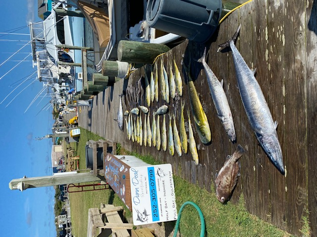 Dunn Deal Offshore Fishing Charters OBX Hatteras