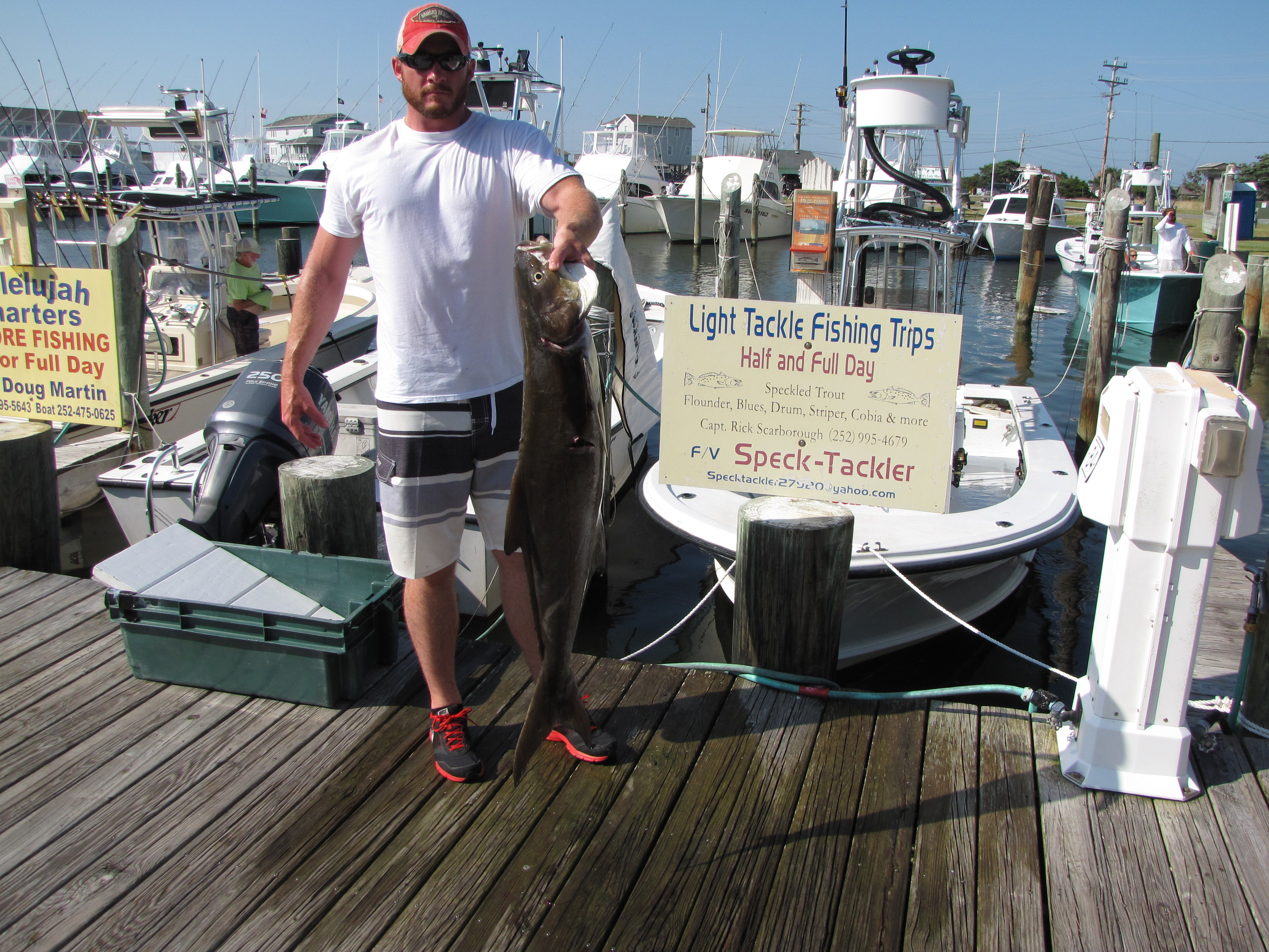 Hatteras Island Inshore Fishing Cobia, Drum, Trout, Blues, Spanish, Reds, Big Drum..
