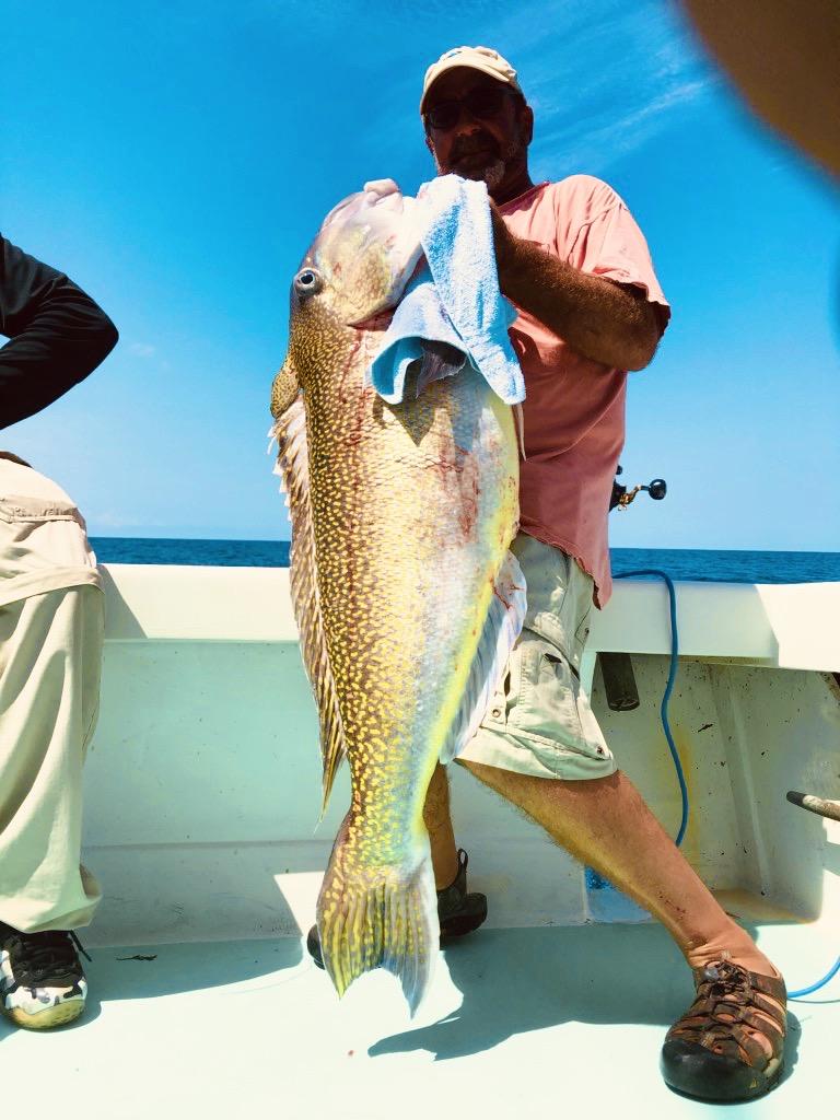 Rabid Tuna Tilefish